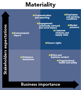 Materiality Graph showing the distribution of stakeholder expectations vs business importance